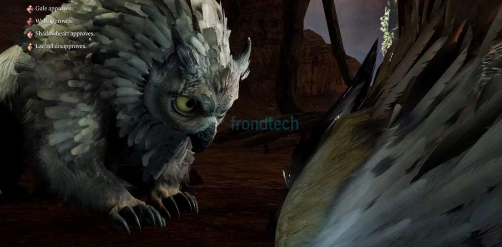 owlbear cub